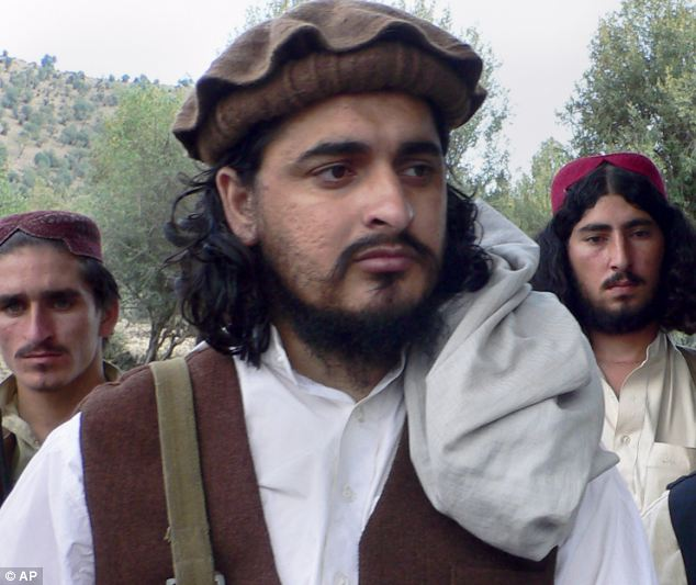 Killed: Shahid was also critical of coverage of the death of former Taliban leader Hakimullah Mehsud, pictured