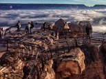 The Grand Canyon was blanketed in fog yesterday as a rare temperature inversion trapped cool air beneath the rim of the gorges