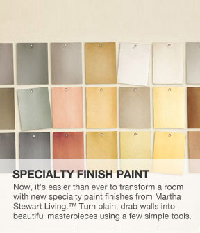Specialty Finish Paint