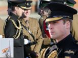 ALDERSHOT, ENGLAND - DECEMBER 06: Prince William, Duke of Cambridge presents service medals to First Battalion Irish Guards at Mons Barracks