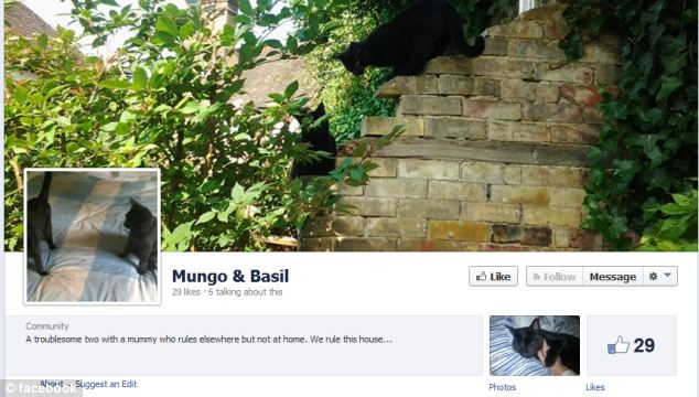Paws for thought: Mungo and Basil's page on Facebook