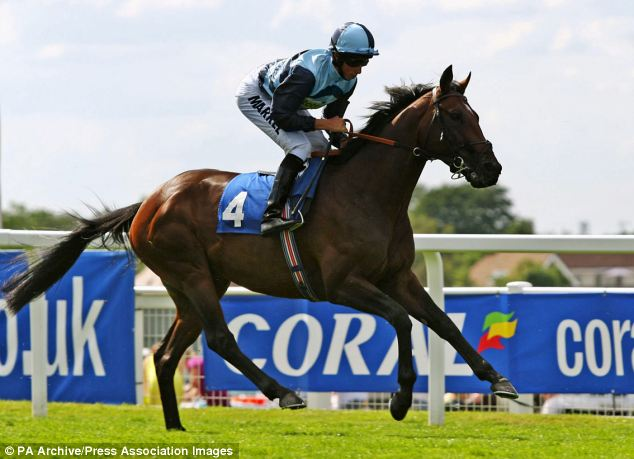 Injury-prone: The once much-fancied King of Wands has been entered into an equine auction at Ascot on Tuesday