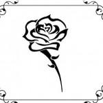 Valea Trandafirilor