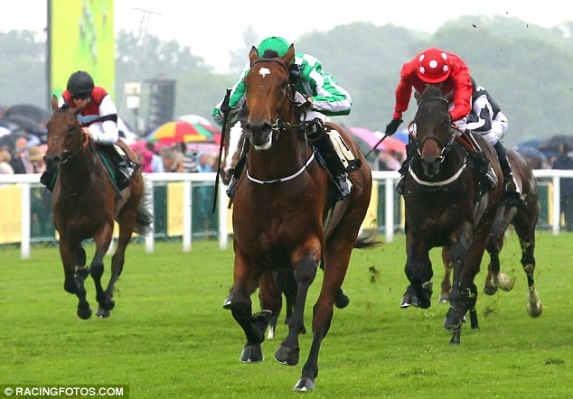 Market leader: War Command has won three of his four races