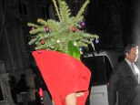 Wearing real fir: Lady Gaga returns to her hotel after the Jingle Bell Ball at London's O2 bizarrely dressed as a Christmas Tree
