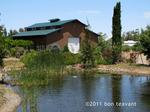 Thumbnail image for Bog-house on tea farm.jpg