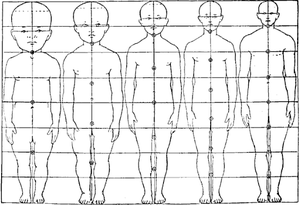 http://web.archive.org/web/20131211170052if_/http://upload.wikimedia.org/wikipedia/commons/thumb/4/49/Neoteny_body_proportion_heterochrony_human.png/300px-Neoteny_body_proportion_heterochrony_human.png