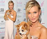 Reindeer games! Angel in white Joanna Krupa shimmers in low-cut gown as she cradles her cute pup at pet charity event