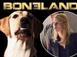 Fighting terrier-ism! Homeland doggy parody Boneland is unleashed