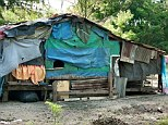 The family's makeshift shack hidden in the hills above a tiny hamlet in New South Wales. There a family four generations of a family practised a cult of incest hidden from the world