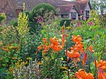An explosion of colour: Great Dixter, one of 25 gardens featured in The New English Garden