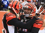 All smiles: Andy Dalton (right) and A.J. Green (left) celebrate during Cincinnati's win over Indianapolis