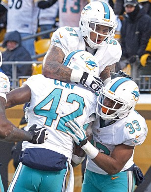 Delight: The Miami Dolphins beat the Pittsburgh Steelers in snowy conditions at Heinz Field