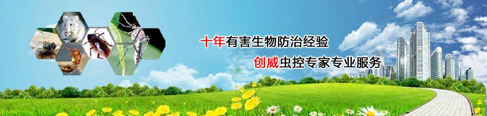 深圳白蚁防治