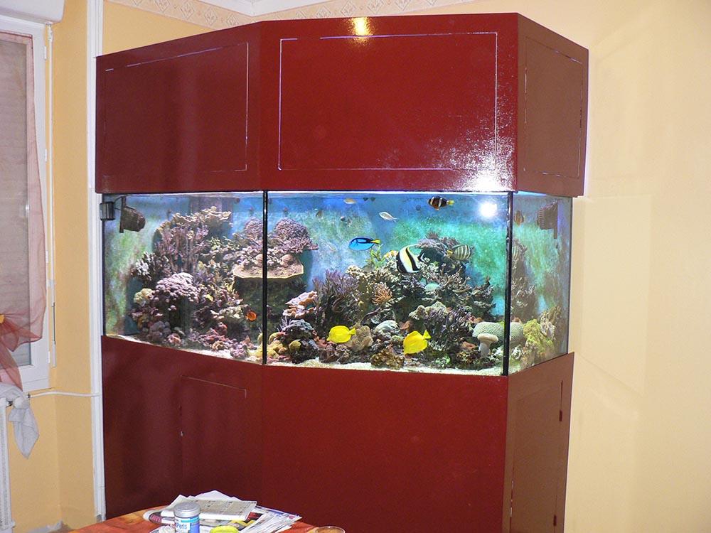 L'aquarium entierrement fermé