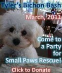 Click to donate to Small Paws Rescue