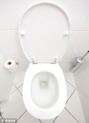 Trapped: 1,132 Britons had to be rescued from the toilet this year