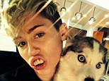 Smile: Miley Cyrus post an Instagram Saturday of her wearing a set of fake teeth