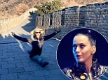 Katy Perry does the splits on the Great Wall of China
