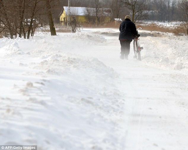 A man pushes his bicycle through the snow on the 53th road near the Horgos border. Due to heavy snowfalls, the border between Hungary and Serbia had to be closed
