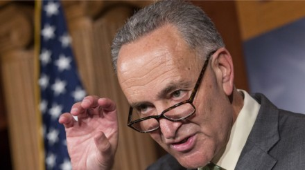"The Amnesty/ Immigration Surge And Senator Schumer's War Against ""White Anglo-Saxons"""