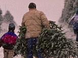 Get ready to pay more: Christmas tree growers will put millions into a Farm Bill-approved fund to help them with marketing, with consumers likely footing the bill in the form of higher prices