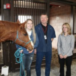Horse Vet Lexington