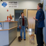 Veterinary Clinic Lexington
