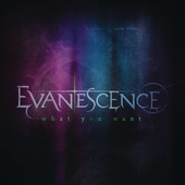 What You Want - Single, Evanescence