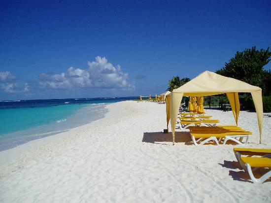Felices vacaciones Penn! Shoal-bay-east-anguilla
