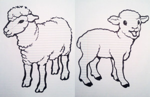What Color is Your Sheep?