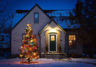 Outdoor Christmas Tree Decorated with Lights in Front of Home