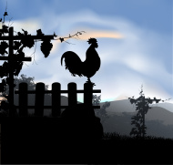 Rooster in the vineyard