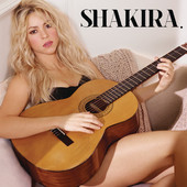 Shakira - Can't Remember to Forget You (feat. Rihanna) bild