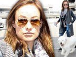 Traveling is ruff! Pregnant Olivia Wilde covers up her growing baby bump and jets out of LAX with beloved dog Paco