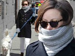 Baby it's cold outside! Pregnant Olivia Wilde rugs up as she takes her dog Paco for a wintery walk