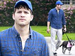 Newly engaged Ashton Kutcher dresses down for a relaxing stroll around neighbourhood with his pet pooch