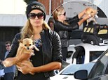 Paris Hilton carried her dog in cute bus shaped pet carrier