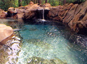 Natural Freeform Pool