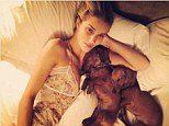 Nice puppies! Rosie Huntington-Whiteley cuddled up to her dachshunds Dolly and Peggy for a bedtime snap which she then posted on her Instagram page on Wednesday night