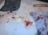 Scene of horror: This picture taken in the bathroom shows the cocked 9mm pistol Pistorius used to killed Miss Steenkamp lying on bathmat (top left) alongside the cricket bat and blood-covered towel