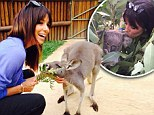 Eva Longoria cuddles a koala and kangaroo at Taronga Zoo