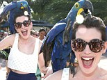 Fowl play! Anne Hathaway is attacked by a parrot as her head is pecked during Miami Walk Of Fame inauguration