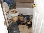 Filthy: The toilet, sink and bathtub were not working in the family's main bathroom, pictured
