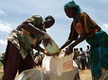 Climate change will have a devastating effect on all parts of the world including food shortages in Africa according to a UN report
