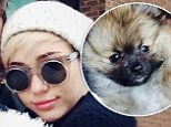 Miley Cyrus shares joy over the gift of new puppy Moonie following tragic death of dog Floyd