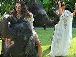 EXCLUSIVE: *PREMIUM EXCLUSIVE**NO WEB** The Kardashian family play with a baby elephant in Thailand\nKhloe, Kendall, Kylie and Kris all have fun taking pictures of an elephant while on their vacation in Thailand.\n<P>\nPictured: The Kardashian - Jenner Family\n<P>\n<B>Ref: SPL731658  030414   EXCLUSIVE</B><BR/>\nPicture by: Brian Prahl / Splash News<BR/>\n</P><P>\n<B>Splash News and Pictures</B><BR/>\nLos Angeles:\t310-821-2666<BR/>\nNew York:\t212-619-2666<BR/>\nLondon:\t870-934-2666<BR/>\nphotodesk@splashnews.com<BR/>\n</P>