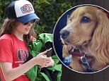Addicting: Ellen Page looked like she may be renaming more dogs as she walked with her eyes glued to her cell phone on a casual day out in Los Angeles on Friday