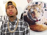 Rapper Tyga's 'pet tiger is confiscated by authorities... and he could face six months jail time for illegal possession of the big cat'