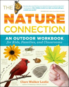 nature connection kids activity book